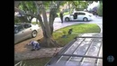 GRAPHIC CONTENT: Surveillance video of shooting of Miami-Dade police officer, growhouse suspect