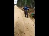 Внимание, розыск по-медвежьи! В Якутиии ищут медведя с канистрой на голове. Косматая спецоперация по поиску бедолаги началась п