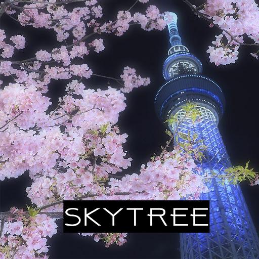 Skytree альбом Skytree