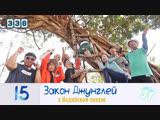 Law of the Jungle 336 Закон Джунглей 336