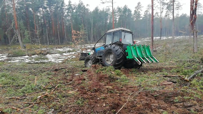 Белорус 1221 с граблями, уборка делянок без снега!