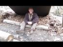 Horseshoe Fungus an Eastern Woodland Fire Treasure