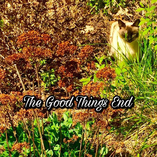 Eugene альбом The Good Things End