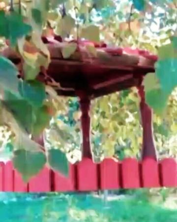 Люблю, играющий в листве, ветерок... Музыка здесь realmusicaulirika ятебе сочи кормушка скворечник...