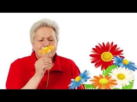Голова садовая ВАЖНО Защищаем капусту от вредителей