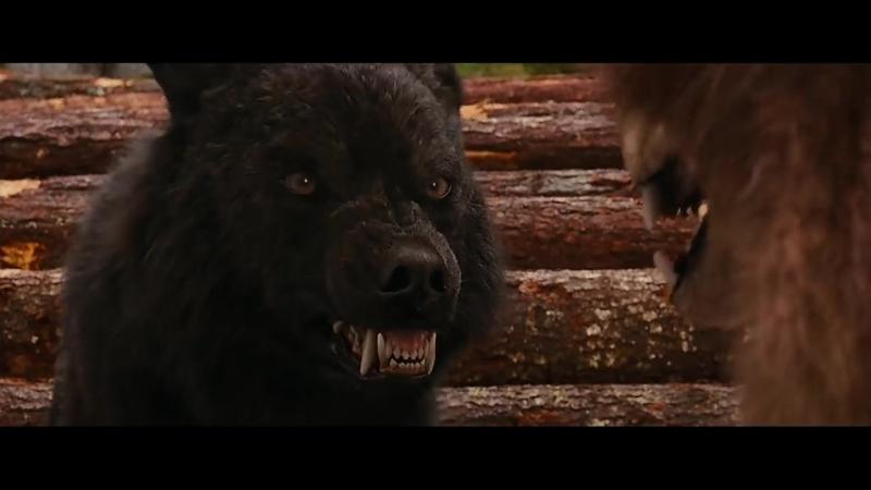 Dreadwing - Клип на фильм Сумерки (ОБОРОТНИ).mp4
