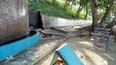 Racha Raya Phuket Lizard Varan