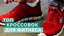 Как выбрать кроссовки для бега тренировок в зале и активного путешествия Skechers Ecco Nike