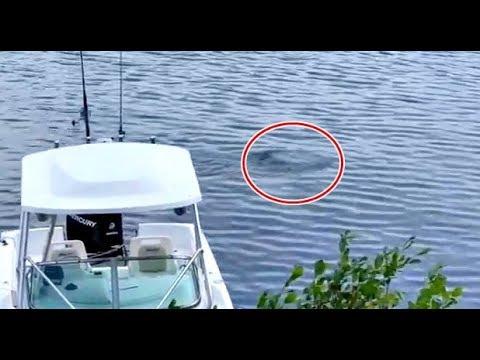 Water UFO Seen In New Hampshire Lake Baffles Eyewitness