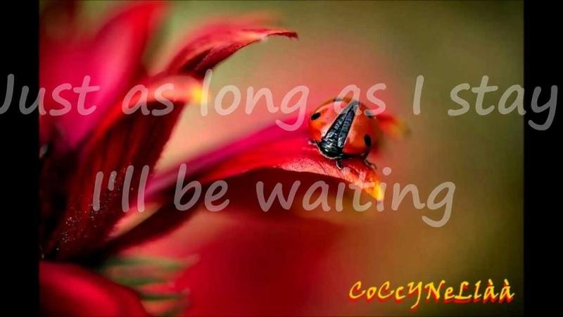 7 SECONDS - Neneh Cherry Youssou Ndour testo traduzione
