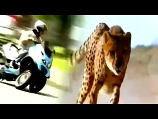 Italo disco 80s. Modern Martino - Race Animal Bikes. Walking magic fly love mix