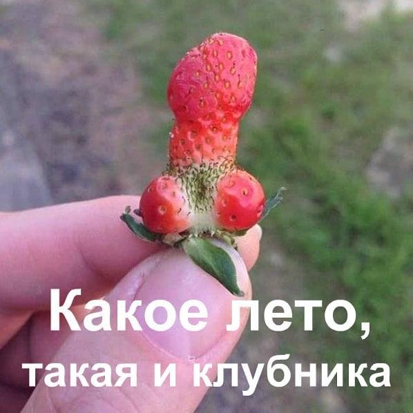 Фото 6376946