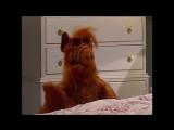 Alf Quote Season 1  Episode 13_Бабушка