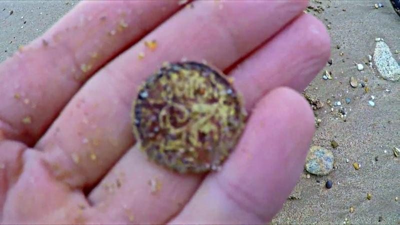 Наконец вышел покопать на пляж (монеты,советы)