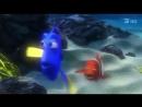 В поисках Немо в 3Д, мультфильм 5 и 6 мая на 15.00