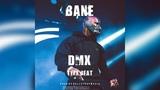 FREE DMX x Swizz Beatz Type Beat - Bane (Prod. by Tundra Beats)