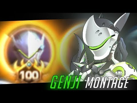 The Legendary Level 100 Genji Heroes of the Storm