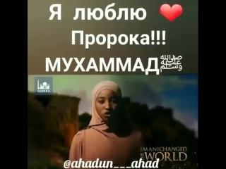 Men Rosululloh sallollohu alayhi va sallamni sevaman