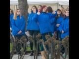 Студенты Ялты поздравили Путина спобедой наВыборах-2018масштабным флешмобом— видео  Новости  Пятый канал
