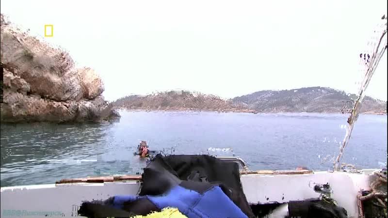 Хранители природы Греция Познавательный путешествие 2005