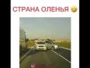 Комбо беспредел на дороге