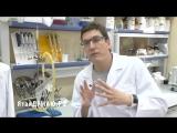 Что делают с нашим телом микробы - микробиолог Андрей Шестаков #ЯтакДУМАЮ