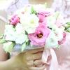 Свадьба Мечты l Невеста l Sweet Wedding