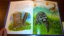 Kindergarten Read aloud The Kissing Hand By Audrey Penn