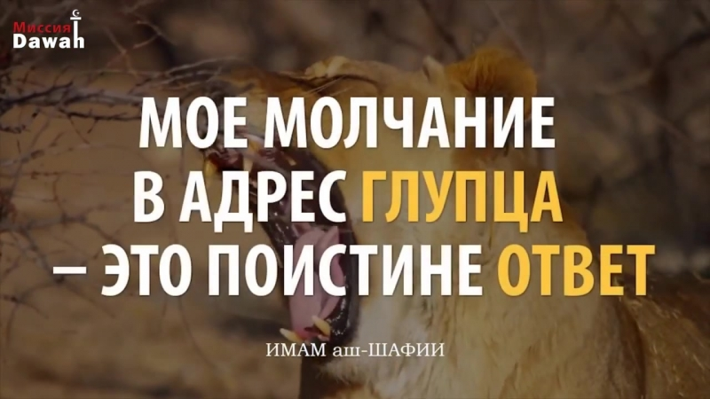 КАМАЛ САЛЕХ - КАК ОТВЕЧАТЬ ХЕЙТЕРАМ ИСЛАМ _ HOW TO RESPOND TO HATERS