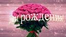 Нежное поздравление С ДНЁМ РОЖДЕНИЯ в ноябре. Красивая видео открытка