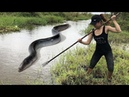 The Most Amazing Girl Spearfishing River Monster Eel Fish