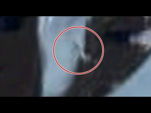 Google earth user discovered hundreds of soldiers hunting a gigantic creature in Antarctica