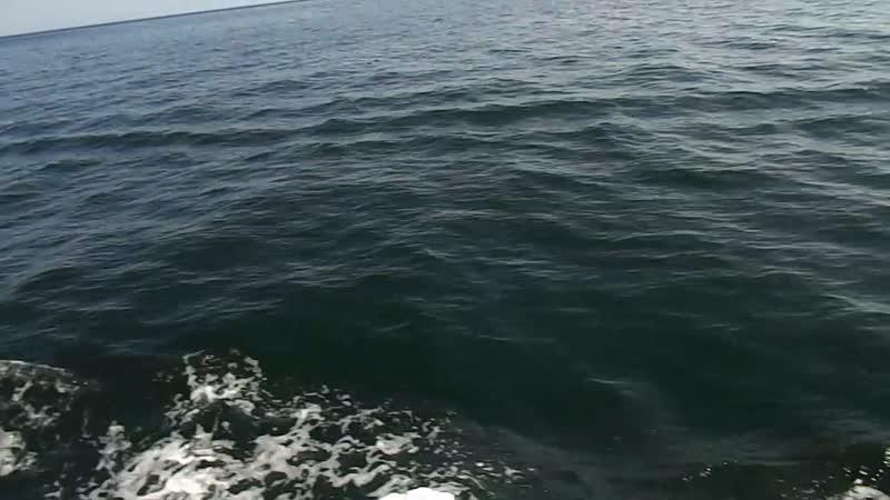 Арабские мелодии на яхте в Омане