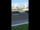 Скачки в Майами