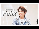 what is a lee felix