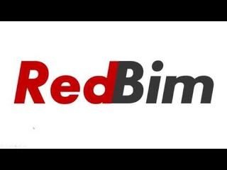 RedBim Запуск Python скриптов в Revit без Dynamo