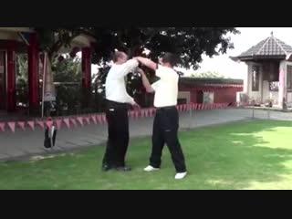 Bagua и Aikido