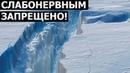 СЕНСАЦИЯ В АНТАРКТИДЕ Ш0КИР0ВАЛА МИР / Документальные фильмы. Новинка кино. Русская премьера!