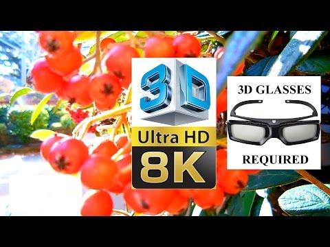 8K [ULTRA-HD] 4320p - 3D