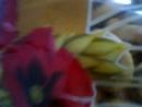 С мамочкой чаёк со сладостями пью! В День 100 летия пограничной службы отмечаю свой юбилей!