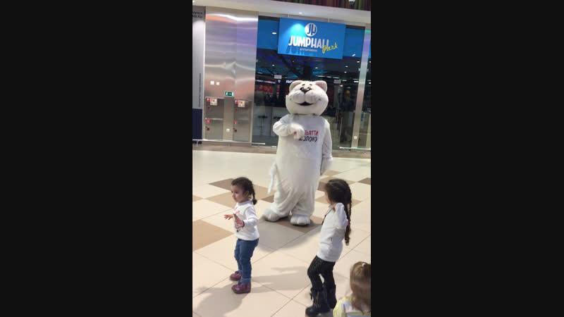 Танцы кота Снежка!