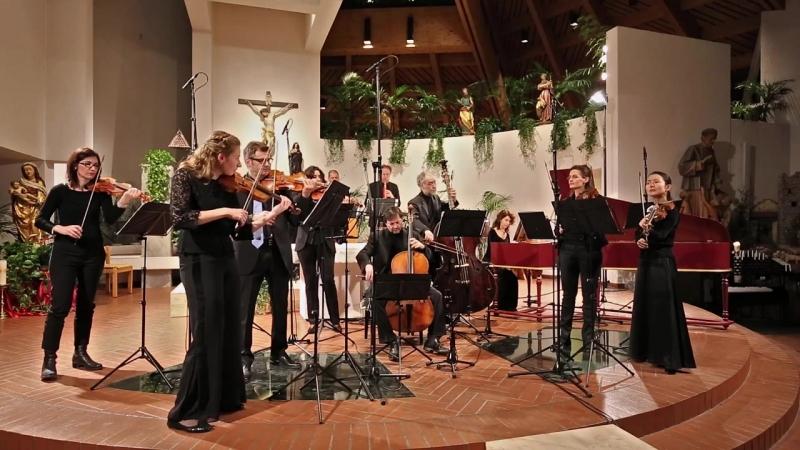 248 (2) - J. S. Bach - Weihnachts-Oratorium II BWV 248/2. Sinfonia - Zefiro Baroque Orchestra [Alfredo Bernardini]