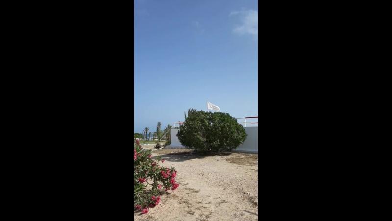 Тунис.остров Джерба