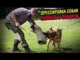 Дрессировка по защитным разделам в г. Волхов.