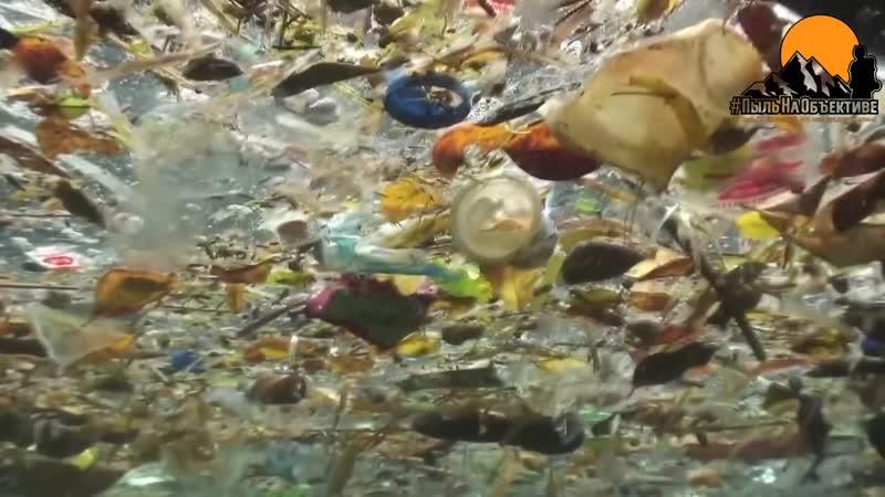 Реки и водоемы Мусоропроводы Дагестана Дрейфующие острова мусора