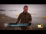 Где поймать, как почистить и что приготовить из свежего лосося на Колыме
