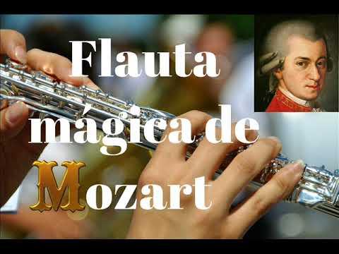 Flauta mágica de Mozart Música clásica de calidad para la gente que sabe