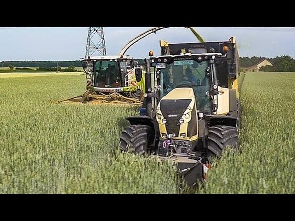 CLAAS Traktoren CLAAS Jaguar häckseln Getreide | Lohnunternehmen STOTZ