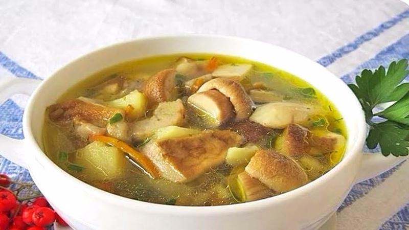 Гибной суп из белых грибов по бабулиному рецепту! Как приготовить суп из белых грибов