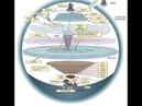 Купол над Землей возможно совсем другой Что находится за куполом Философия тракториста